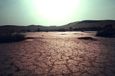 Drought — Photo