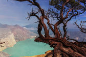 Ijen — Stock Photo