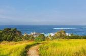 Java beach — Stock Photo