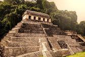 Palenque pyramid — Stock Photo
