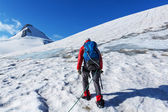 Climber on glacier — Stock Photo