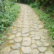 Curving stone pavement footpath in the mountain resort. — Stock Photo