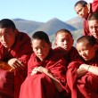 Chamdo pass in red color Teng Temple disciple Nyingma school — Stock Photo