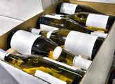 White wine in bottles in wine shop — Stock Photo