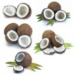 Set coconut with leaves — Stock Photo