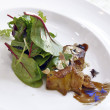 Foie gras with salad — Foto Stock