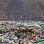 Household dust on a city dump — Stock Photo #3929223