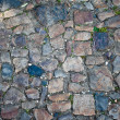 Royalty-Free Stock Photo: Cobbled road