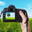 The  landscape and digital photographic camera — Stock Photo