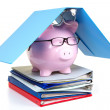 Pink piggy bank and documents — Stock Photo