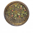 Stok fotoğraf: Decorative ornated metallic plate with grape and leafs pattern