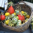 Stock Photo: Small decorative green pympkins in basket