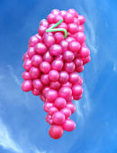 Flying balloons in the form of grapes over blue sky — Stock Photo