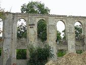 Ruinas del castillo medieval con vegetación de — Foto de Stock