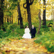 Bride and groom walking in the forest — Stock Photo