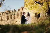 Bride and groom kissing in the ancient castle — Stock Photo