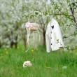 White coat, basket and bouquet in garden — Stock Photo #46131821