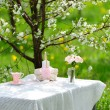 Bouquet of roses and  cup on the table in the garden — Stock Photo #46131869
