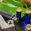 Shotgun, shells and autumn leafs - Stock Photo