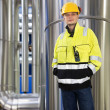 Stock Photo: Boiler room engineer