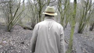 Ormanda yürüyüş — Stok video