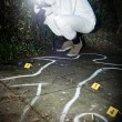 Stock Photo: Crime scene photographer