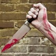 Stabbing knife — Stock Photo