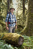 Hiker in temperate rainforest — Stock Photo