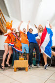Ecstatic Dutch fans — Stockfoto
