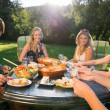 Friends Enjoying Meal At Garden Party — Stock Photo #31413927