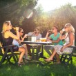 Friends enjoying garden party on a sunny afternoon — Stock Photo #31972575