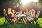 Friends enjoying garden party on a sunny afternoon — Stock Photo
