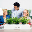 Environmentalists Discussing In Office — Stock Photo