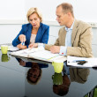 Environmentalists Discussing Over Documents In Office — Foto Stock