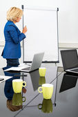 Female Environmentalist at the Flipchart — Stock Photo