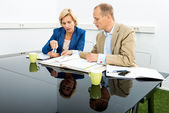 Environmentalists Discussing Over Documents In Office — Stock Photo