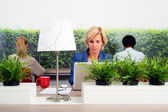 Sustainable Hot Desking — Stock Photo