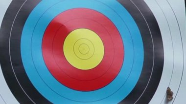 Archery — Stock Video