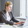 Executive business woman with notebook — Stock Photo #39422203