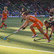 Постер, плакат: Netherlands beats Belgium during the Hockey World Cup 2014