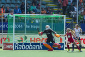 Hockey World Cup 2014 — Stockfoto