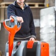 Pallet truck portrait — Stock Photo #49686801