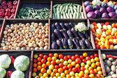 Zbiór warzyw — Zdjęcie stockowe