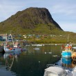 Narsaq — Stock Photo #21440695