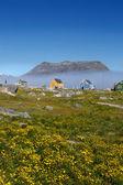 Coloridas casas en nanortalik city en groenlandia del sur. — Foto de Stock