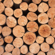 Biomass — Stock Photo #12780983
