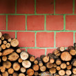 Fire wood — Stock Photo #13122744