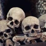 Human skulls — Stock Photo #13307136