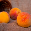 Постер, плакат: Peaches and punnet