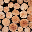 Biomass - Stock Photo